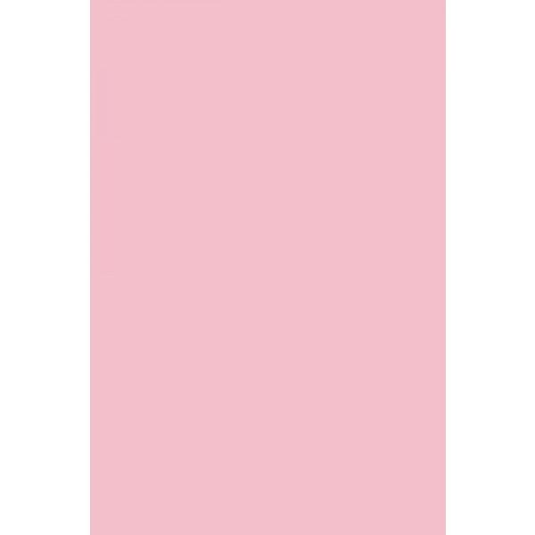 ΧΑΡΤΙ CANSON COLORLINE 50x70 220gr Ανοιχτο Ροζ Χρωμα Rose Petal